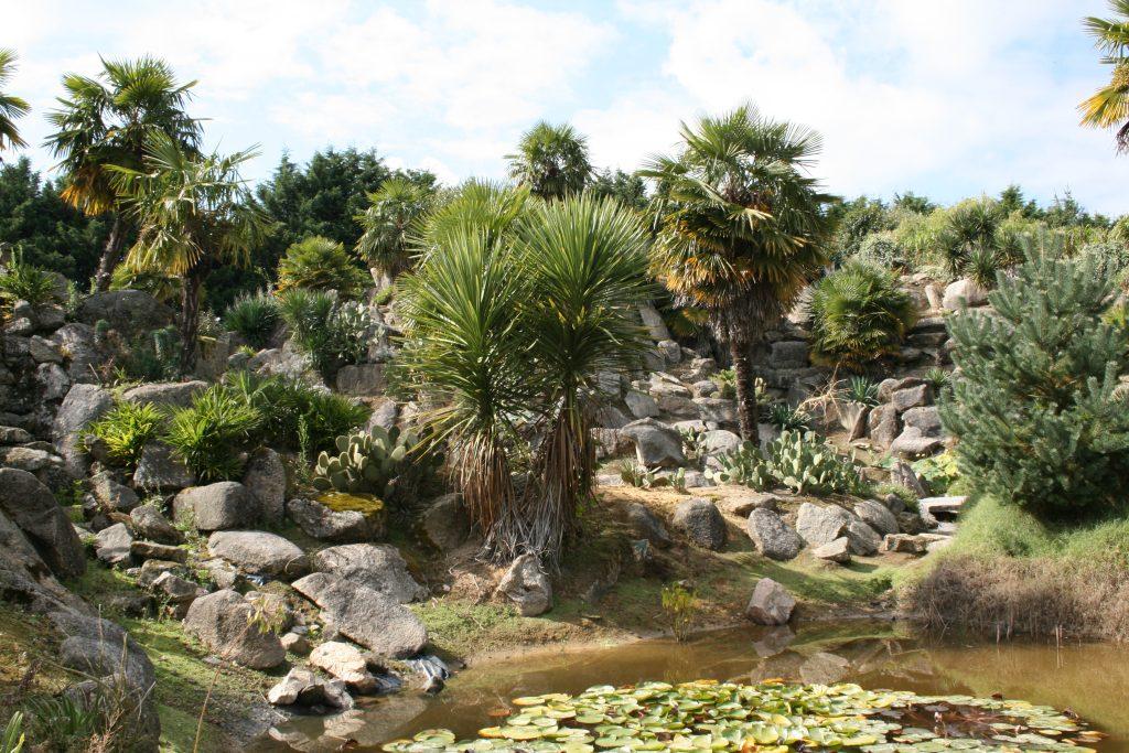 saint jacut les pins d gustez les ananas du tropical parc edition loisirs. Black Bedroom Furniture Sets. Home Design Ideas